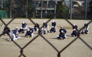 Pp_baseball